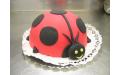 GYE2106 - erre a gyerek torta kódra hivatkozzon!