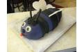 GYE2119 - erre a gyerek torta kódra hivatkozzon!
